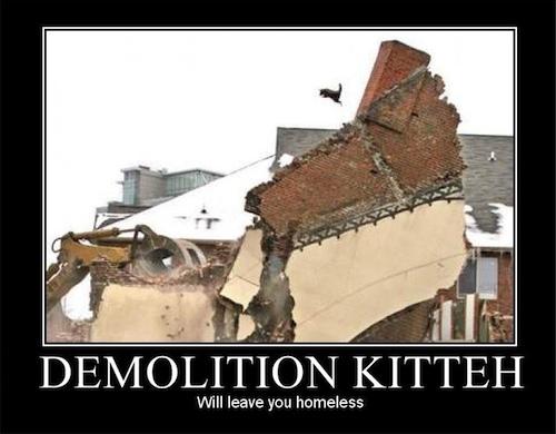 demolition-kitteh