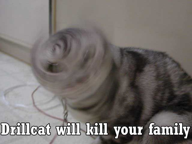 probably my favorite lolcat of all time
