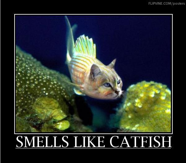 smells like catfish