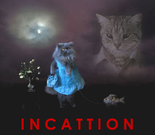 incattion500